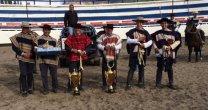 Caballo Y Rodeo Portal Del Caballo Y Rodeo Chileno